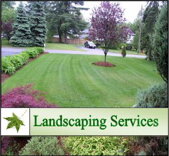 landscaping-services-hire